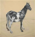 Nicola Hicks, Horse