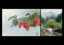 Hiroshi Tadokoro, Camellias (+ Sound of forest; 2 works)