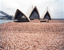 Spencer Tunick, Sydney 1 (Opera House)