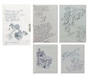 Yuksel Arslan, Birth of arture-letter-dessins (5 works)