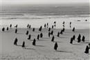 Shirin Neshat, Untitled (Rapture)