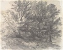 Thomas Gainsborough, A clump of trees (from a sketchbook)