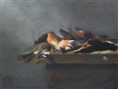 Jan Vonck, Dead birds on a stone ledge