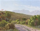 Vera Volschenk, A winding road flanked by aloes