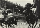 Alexander Rodchenko, The Horse Races