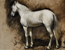 Edwin Lord Weeks, Study of an Arabian White Stallion (Formerly Study of a White Horse)