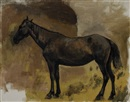 Edwin Lord Weeks, Study of a Brown Horse