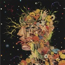 Fred Tomaselli, Head