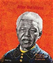 Kunle Adegborioye, Mandela after the storm