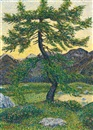 Gottardo Guido Segantini, Föhre in Gebirgslandschaft (Pine in mountain landscape)