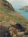 Bryan Hook, Gathering eggs on the cliffs of Lundy