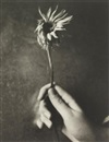 Patti Smith, Jesse with flower
