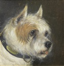 Edward Aistrop, A portrait of a Terrier