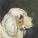 Edward Aistrop, Portrait of a Clumber Spaniel