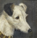 Edward Aistrop, A portrait of a Fox Terrier