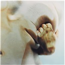Jenny Saville, Closed Contact #5