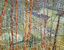 Peter Doig, The Architect's Home in the Ravine