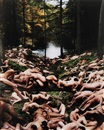 Spencer Tunick, Pennsylvania 3