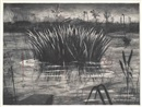 William Kentridge, Reeds