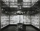 Matthew Pillsbury, Crystal Palace, Hunterian Museum, London, September 25