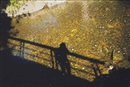 Nan Goldin, Self-portrait on bridge at golden river at Silver Hill