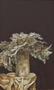 Lui Liu, Dusty Miller