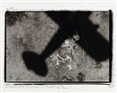 Peter Beard, Machine in the Garden, Tsavo National Park