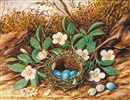 William M. Cruikshank, Bird's Nest (With Blue Eggs) and Flowers