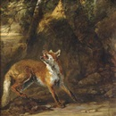Follower Of Jan Fyt, Renard sous un arbre