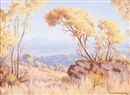 Willem Hermanus Coetzer, Autumn trees overlooking a gorge