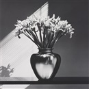 Robert Mapplethorpe, Irises