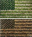 Vik Muniz, Two Flags (diptych)
