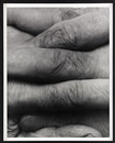 John Coplans, Interlocking Fingers, No 8