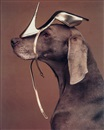 William Wegman, Shoe Head