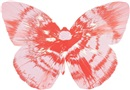 Damien Hirst, Untitled (Butterfly spin painting)