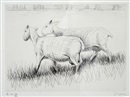 Henry Moore, Shorn sheep