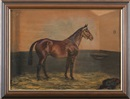 G. A. Cattley, Bay Thoroughbred in a stable