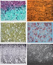 Mel Bochner, Strong Language (suite of 6 prints)