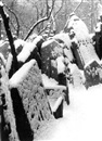 Old Jewish cemetery in the snow by Tibor Honty