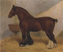 A heavy horse by Frank Babbage