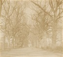 Coley Avenue, Reading by William Henry Fox Talbot