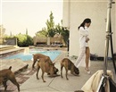 Boxers, Mission Hills by Larry Sultan