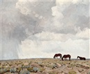 Northern Arizona, horses grazing by Don Louis Perceval