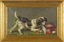 Untitled (U.S. Cartridge Co. depicting an English setter playing with a box of U.S. Ammunition Company's Romax brand black powder shells) (illus.) by Edmund Henry Osthaus