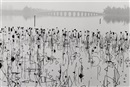 Summer Palace, Beijing, China by René Burri