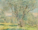 Olive trees (+ View of Cagnes, verso) by Frederick Carl Frieseke