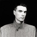 David Byrne by Robert Mapplethorpe