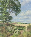 Summer in Angus by James McIntosh Patrick