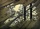 Modderplas (Puddle) by M. C. Escher
