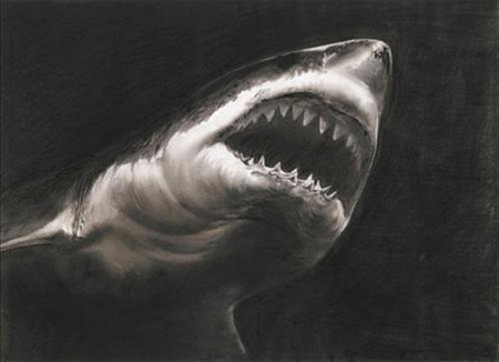 Study for Shark by Robert Longo